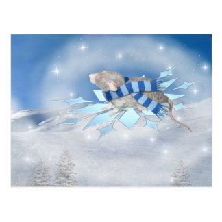 Winterland Journey Postcard