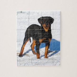 Winterland Rottweiler Jigsaw Puzzle