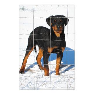 Winterland Rottweiler Stationery Paper