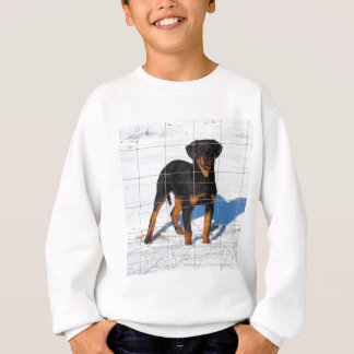 Winterland Rottweiler Sweatshirt