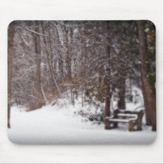 Winter's Trail Mouse Pad