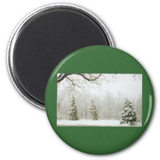 Winter's Trees Magnet