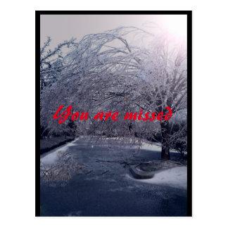 Winters Walk Postcard