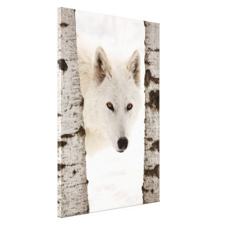 Winter's Wolf Gallery Wrapped Canvas
