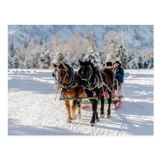 Winter's Wonderland Postcard