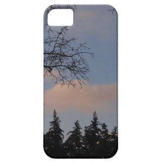 WinterSky Case For The iPhone 5