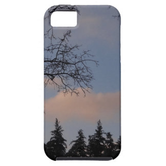 WinterSky iPhone 5 Cases