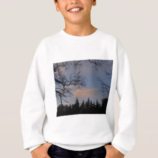 WinterSky Sweatshirt