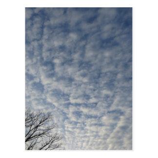 Wintery Clouds Postcard