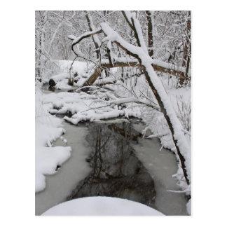 Wintery Day Postcard