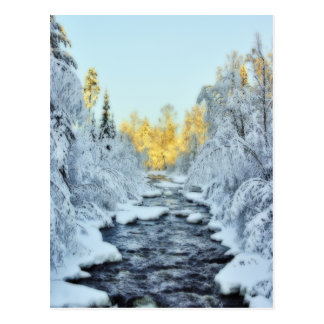 Wintery Stream Postcard