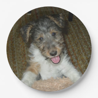 wire fox terrier cute pup 9 inch paper plate