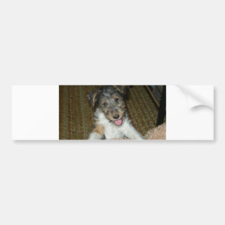 wire fox terrier cute pup bumper sticker