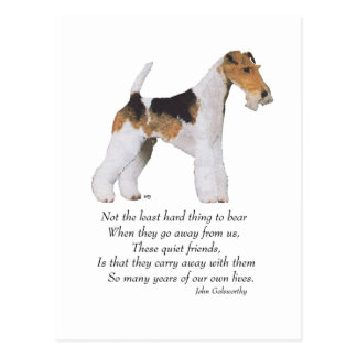 Wire Fox Terrier Rainbow Bridge Postcard