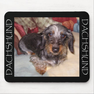 Wire Hair Dachshund Mouse Pad