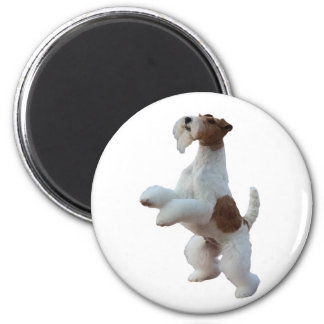wire hair fox terrier magnet