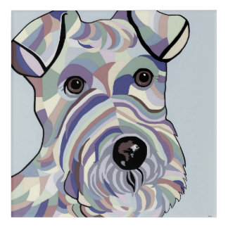 Wire Hair Terrier in Denim Colours Acrylic Print