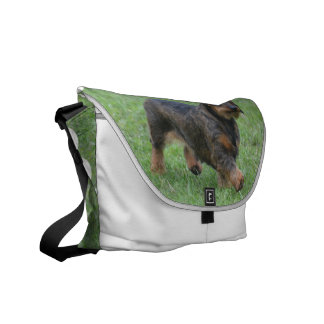 Wire Haired Dachshund Courier Bag