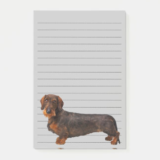 Wire Haired Dachshund Post-it Notes