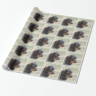 Wire Haired Daschund Dog