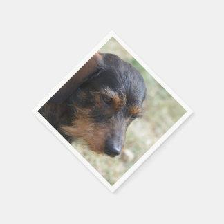 Wire Haired Daschund Dog Disposable Napkins