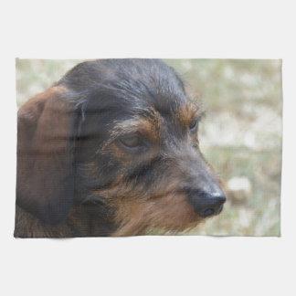 Wire Haired Daschund Dog Hand Towel