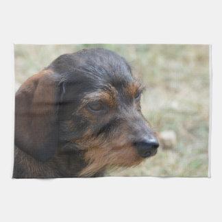 Wire Haired Daschund Dog Hand Towels
