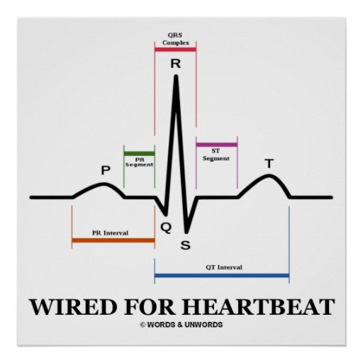 Wired For Heartbeat (ECG / EKG) Electrocardiogram Print