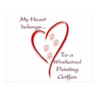 Wirehaired Pointing Griffon Heart Belongs Postcard
