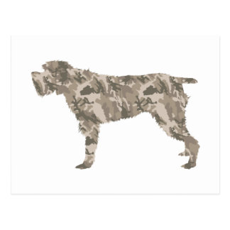 Wirehaired Pointing Griffon Postcard