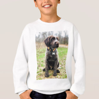 Wirehaired pointing Griffon puppy Sweatshirt