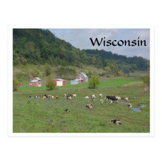 Wisconsin Pasture Postcard