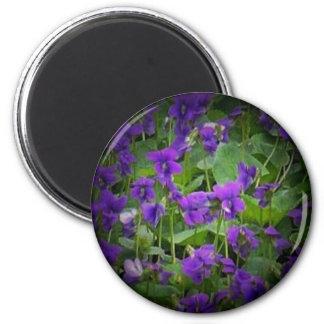 Wisconsin State Flower: Wood Violet spotlight Magnet