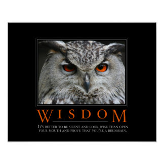 Wisdom Demotivational Poster