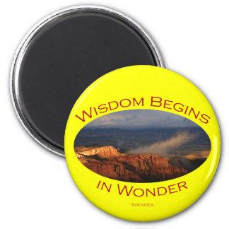 wisdom magnet