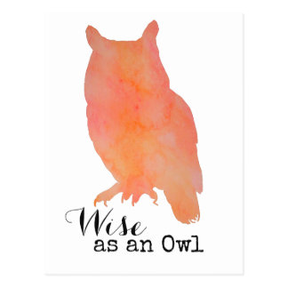 Wise as an Owl Woodland Watercolor Postcard