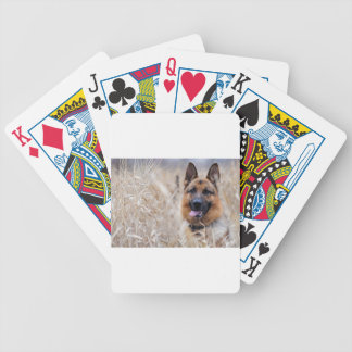 Wise German Shepherd Puppy Bicycle Playing Cards