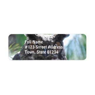 Wise Long Eared Owl Return Address Labels