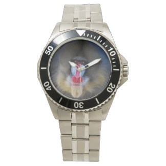 Wise Mandrill Monkey Watch