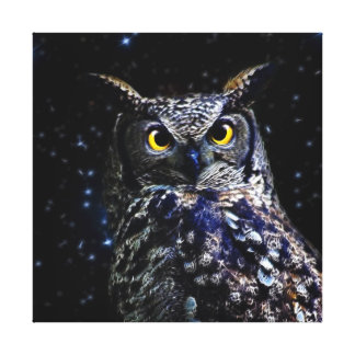 Wise old Owl and stars Canvas Print