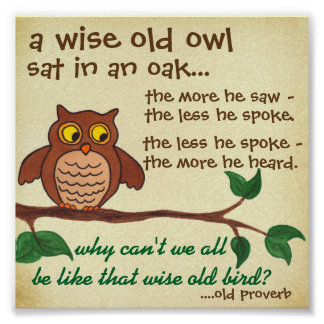 Wise Old Owl - Proverb - Mini Poster