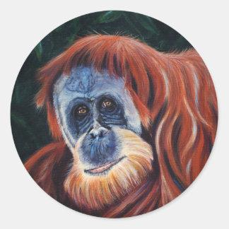 Wise One - Orangutan Round Sticker