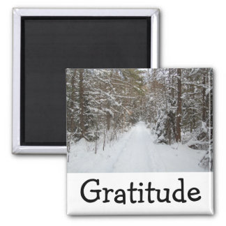 Wise Words Magnet:  Gratitude Magnet