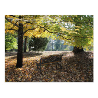 Wish You Were Here Autumn Bench Postcard