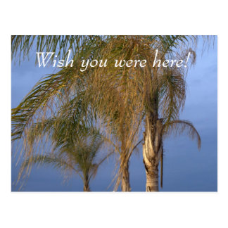 Wish you were here! CUSTOMIZE Postcard Post Cards