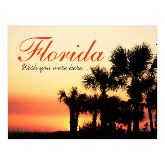 Wish you were here - Florida palm tree sunset Postcard