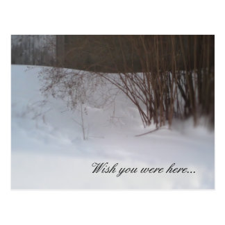 Wish you were here... post card