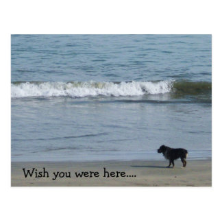 Wish you were here.... postcards