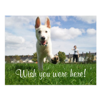 Wish you were here! post card