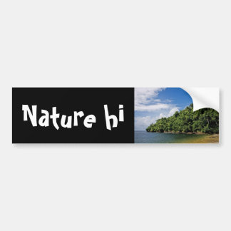 wishes ashore bumper sticker